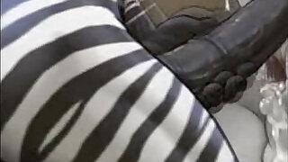 Zebras in November - 1:33